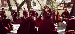 Study buddhism debates